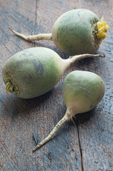 Green Chinese Radish