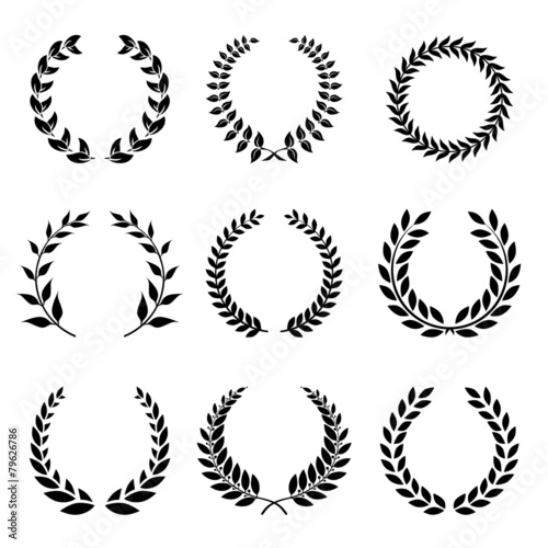 Vector Collection of Laurels, Floral Elements and Banners - 79626786