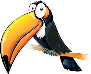 fun toucan cartoon isolated on white.