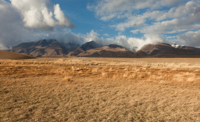 Altai foothill steppes