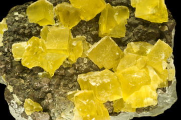 Yellow fluorite crystals. Museum piece from Cornwall, UK.