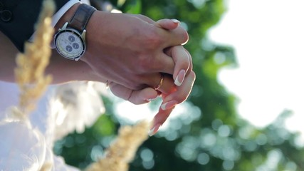 Wedding rings bride and groom hands close-up romance in nature