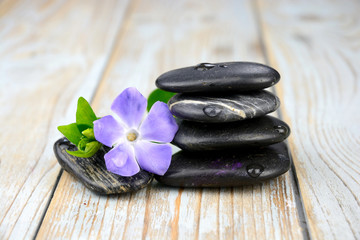 Black zen stones with purple flower on old wood