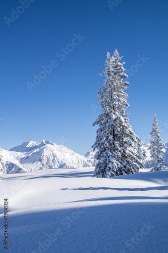 Winterlandschaft n den Alpen - 79645154