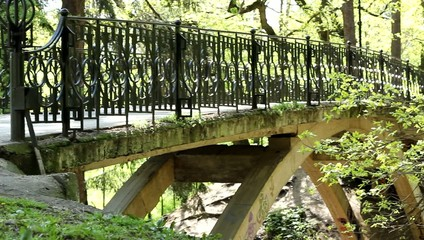Pedestrian Large Bridge in the Park