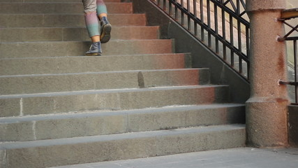 People and Dogs Descending Stairs