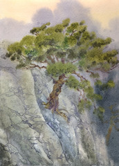 Watercolor landscape. Pine among cliffs