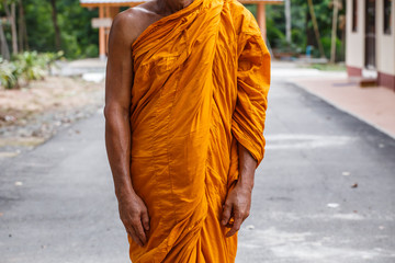 Buddhist monk meditation in standing pose in peace
