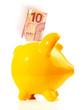 Sparschwein mit 10 EURO Geldschein
