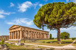 Temples of Paestum Archaeological Site, Salerno, Campania, Italy - 79652770