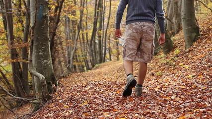 Trekking Through Autumn Forest