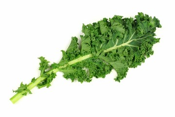 Single fresh kale leaf over a white background