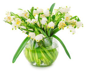 Spring snowflake flowers in glass bowl