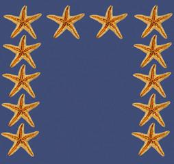 cornice di stelle marine