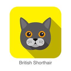 British shorthair cat breed face cartoon flat icon design