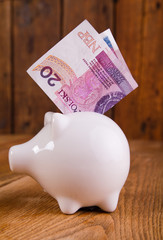 piggy bank with polish banknotes