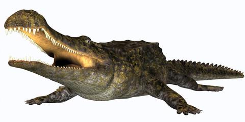 Sarcosuchus Reptile