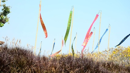 Wind with Prayer flags or Tung Flag of Lanna at northern
