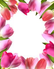 Beautiful Pink Realistic Tulip Frame Vector Illustration