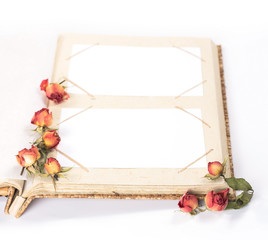 open photo album book with withered rose