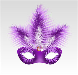 Elegant carnival mask with beautiful feathers. Vector illustrati