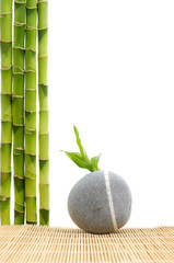 bamboo grove and gray stones on mat