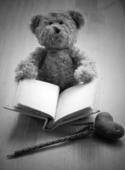 close up Teddy bear hold blank book