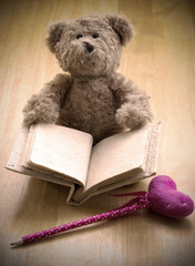 close up Teddy bear hold blank book