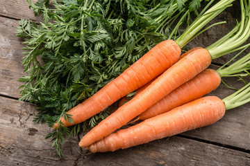 Fresh and ripe carrots on wooden background