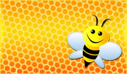 Honigwabe mit Biene / Honey Bee