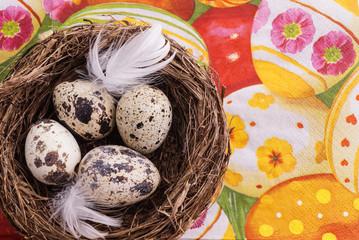 Quail egg in nest, spring and easter