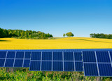 Solar power cells with a rapeseed field  as a backgrop