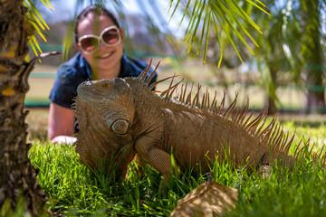 portrait of tropical iguana