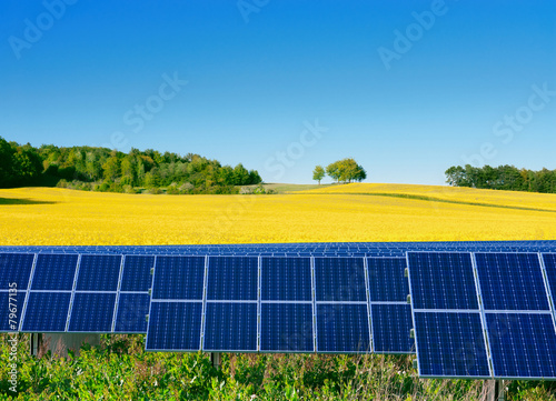 Solar power cells with a rapeseed field  as a backgrop - 79677135
