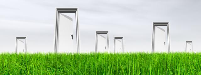White door in grass with sky banner