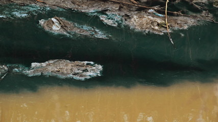 River Water Pollution And Contamination from Chemical Factory
