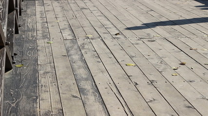 Shaddow Walking on Wooden Bridge