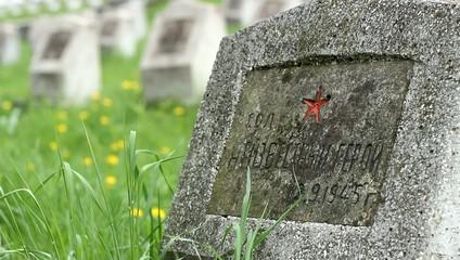 Soviet Soldier WWII Grave