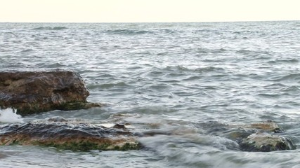 Washed Stone at Shore