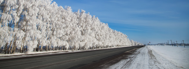 Winter park in snow. beautiful winter landscape with road and sn