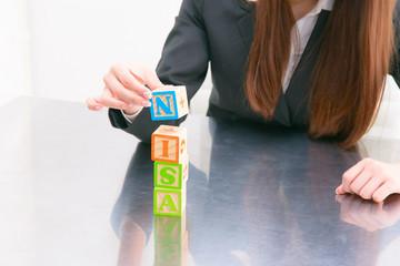 NISA ビジネス 積み木
