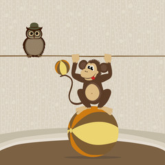 Cute monkey on the ball and owl