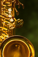 fragment of the saxophone