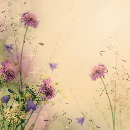 Gentle color floral background with flowers © artmim