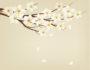 Blossoming tree branch with spring flowers. Vector illustration.