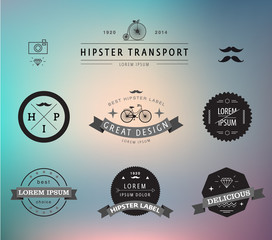 set of vector hipster modern labels, icons