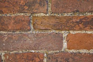 Ziegelsteinmauer / wall