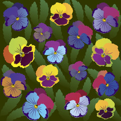 Colored pansy flowers on background of leaves