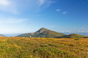 Panoramic view of summer landscape in mountains, yellow and