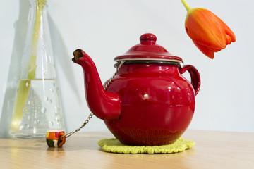 Tetera roja y tulipán